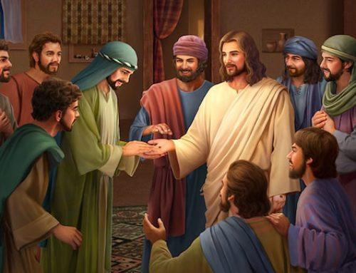 Skupaj in z Njim – nedelja Božjega usmiljenja